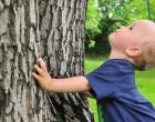 Jak przywiązuję moje dziecko do drzewa (1)
