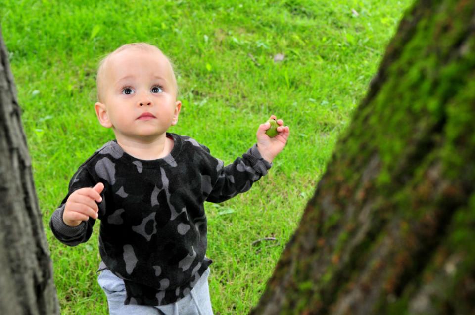 Jak przywiązuję moje dziecko do drzewa (7)