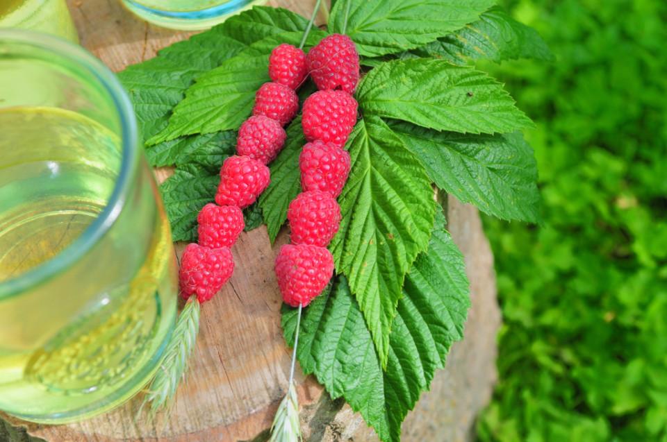 zielona herbata na lato (7)