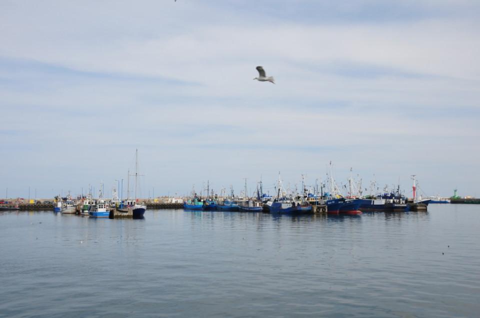 polskie morze.jpeg (38)