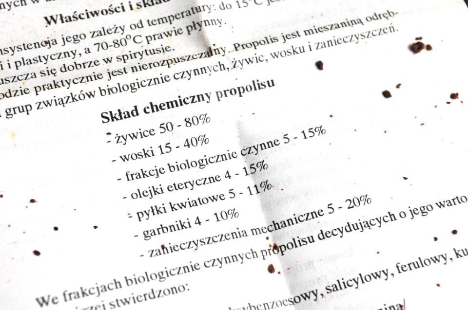 Magiczny propolis - jak zrobić propolis (7)