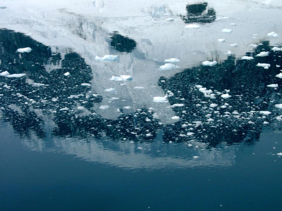 Gdzie jest Tata - Antarktyda, Przylądek Horn i Cieśnina Magellana (14)