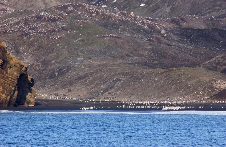 Gdzie jest Tata - Antarktyda, Przylądek Horn i Cieśnina Magellana (19)