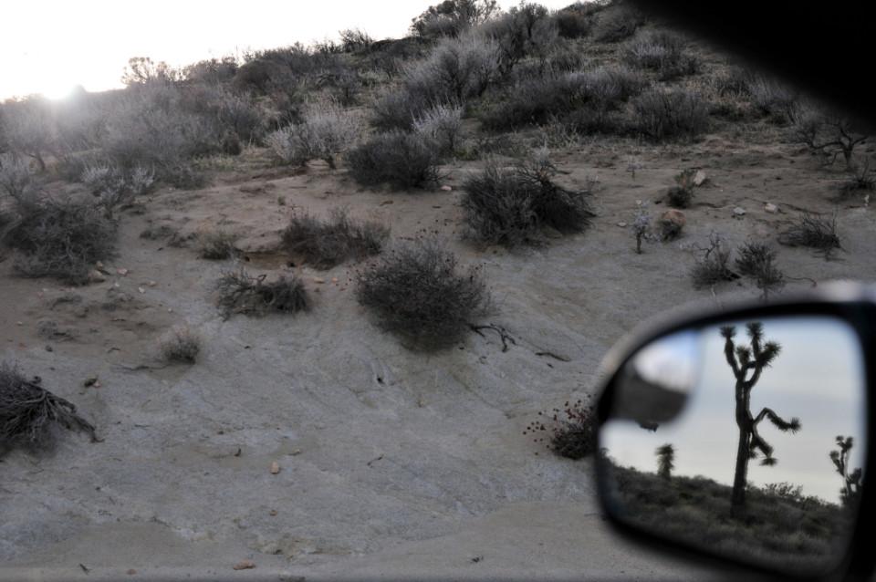 Mojave Desert_10