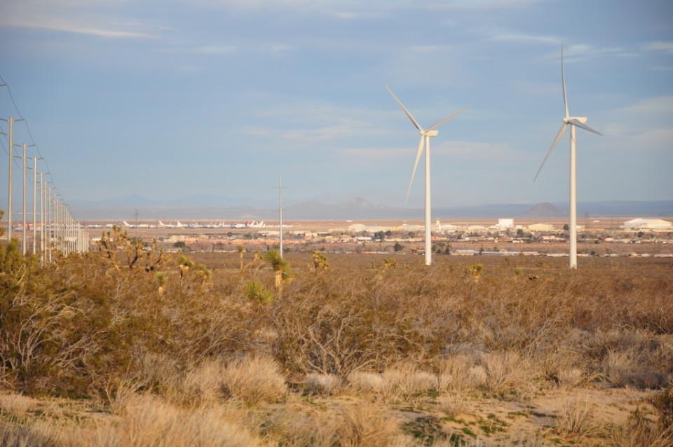 Mojave Desert_16