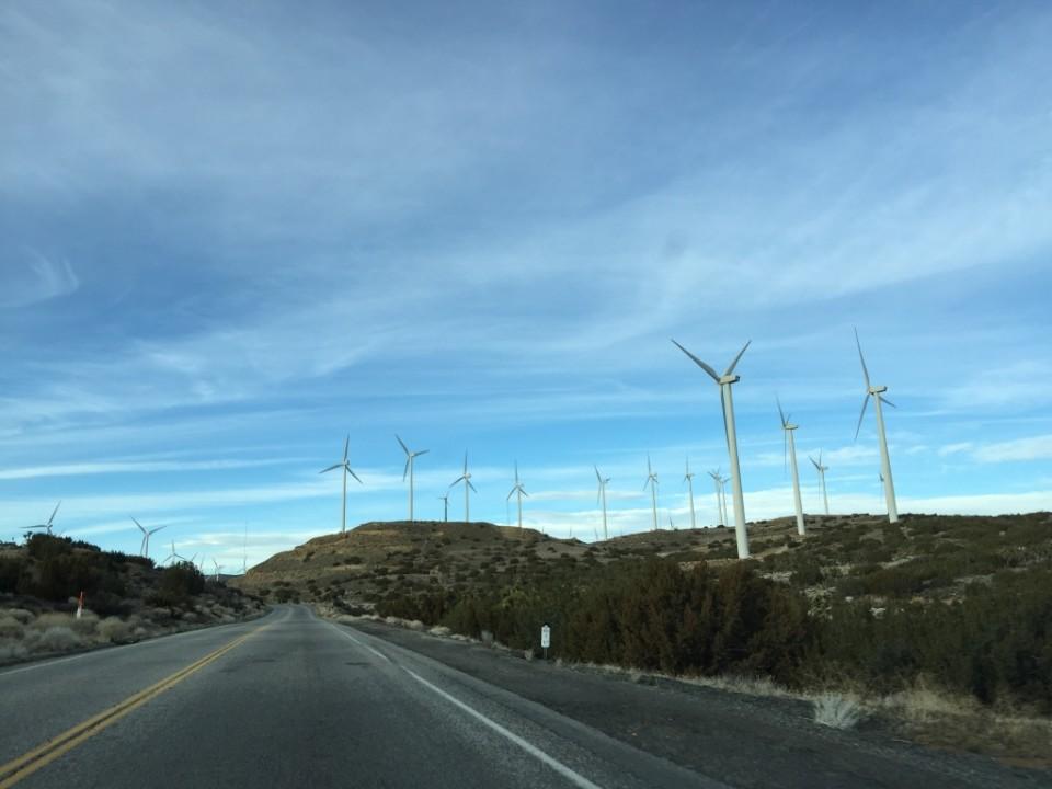 Mojave Desert_3
