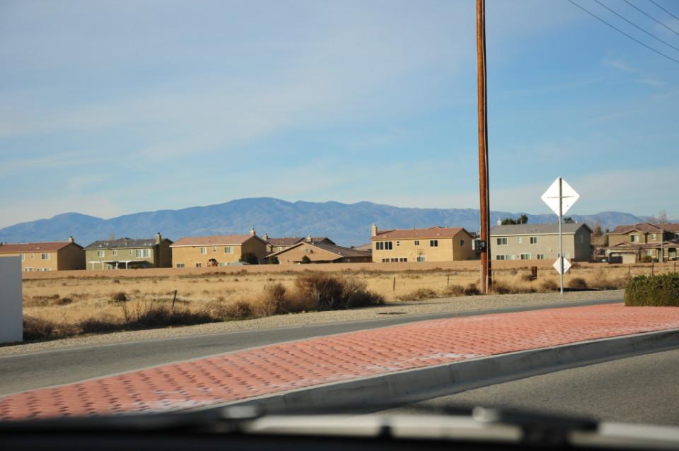 Mojave Desert_8