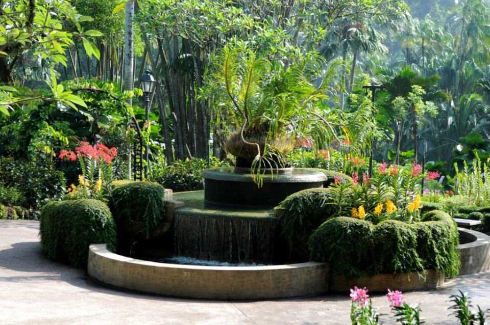 Orchid Gardens_2129-R