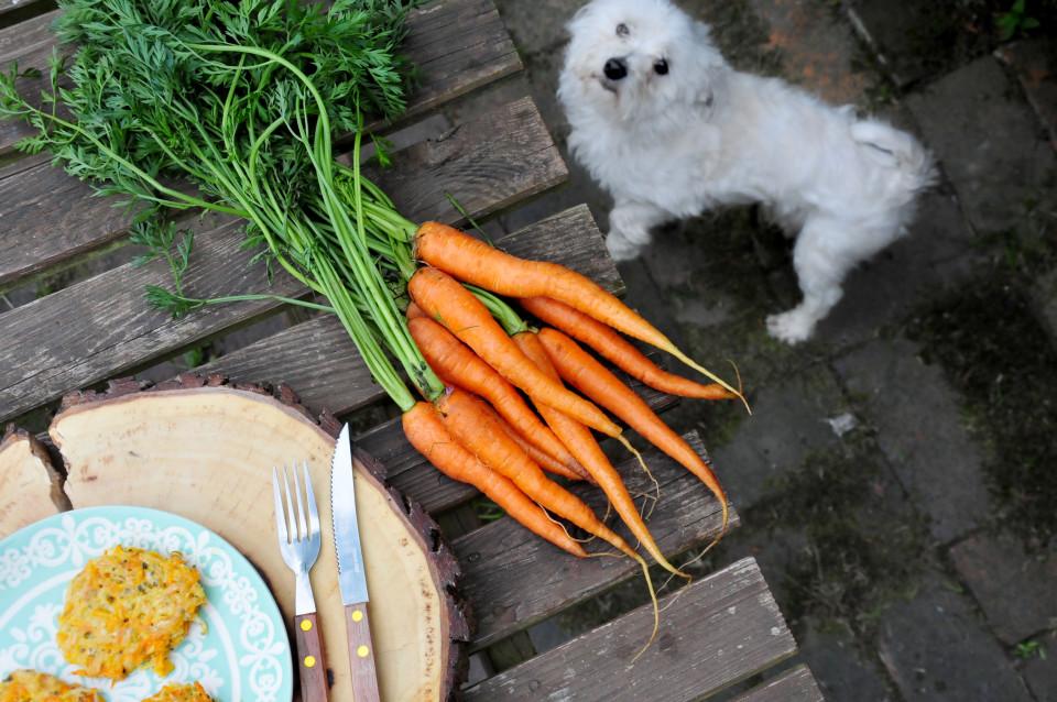 Placki z młodą marchewką i selerem 6