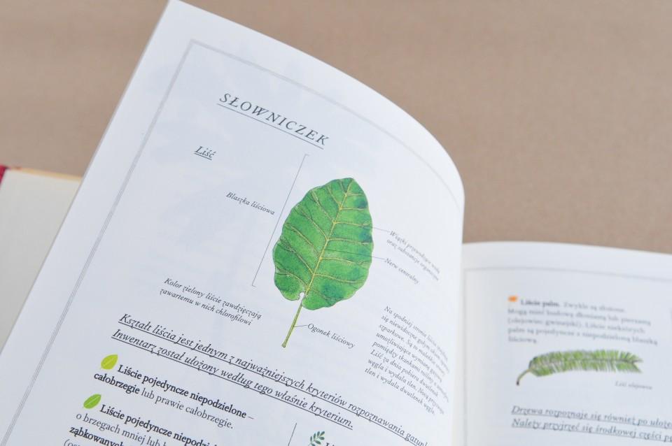 ksiazki dla dzieci biblioteka malego czlowieka szczesliva - 66