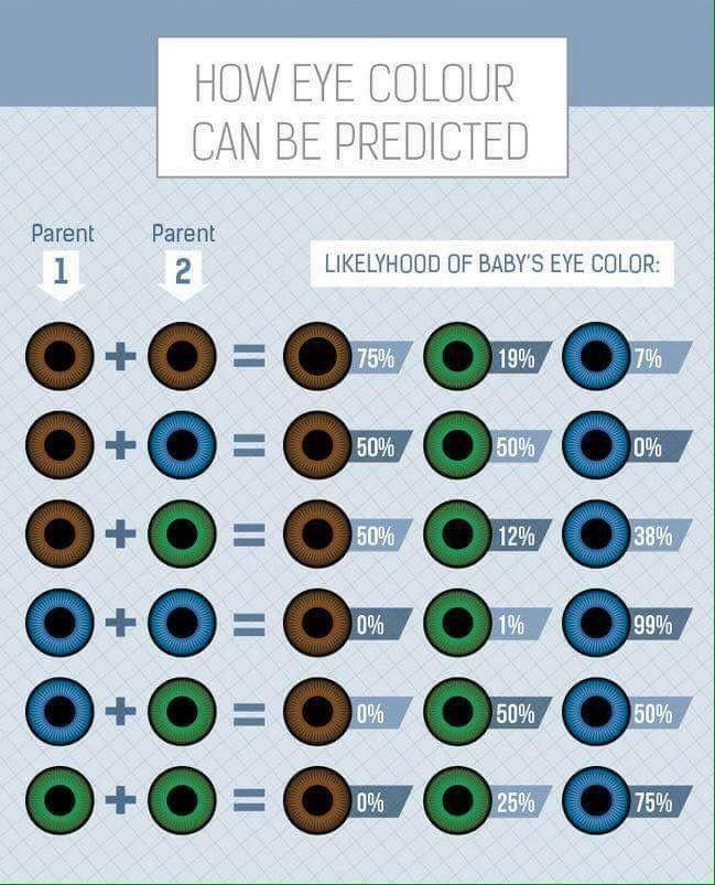 Jaki Kolor Oczu Dziedziczy Dziecko Po Rodzicach? | Szczesliva